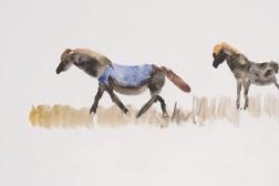 Campo, 1979, aquarelle sur papier