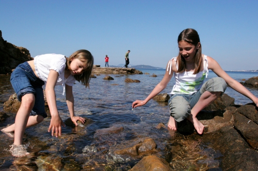 Éducation à l'environnement marin