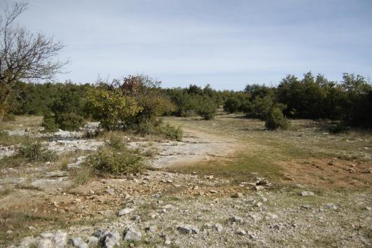 Plateau Siou Blanc