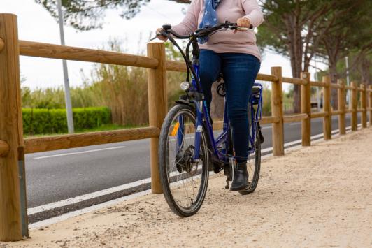 Vélo à Assistance Electrique