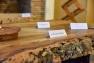 Weekend du Chêne liège, des Arts et de la Provence