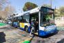 Bus Escaillon