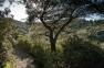 Site natura 2000