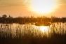 Coucher de soleil aux Salins d'Hyères
