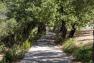 Travaux de requalification du chemin de Faveyrolles