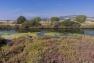 Les salins de Hyères - Canal extérieur